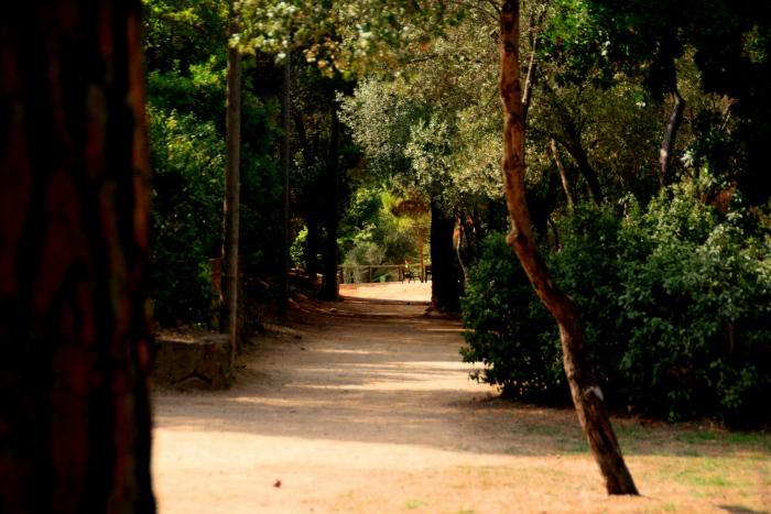 El Parc del'Oreneta